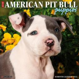 2021 Just American Pit Bull Puppies Calendar